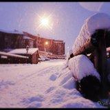 Neuschnee-Wochenende: Bilder vom 15.-18.11.2014