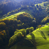 Blick auf die steilen Talhänge im Münstertal - ©Erich Spiegelhalter/STG