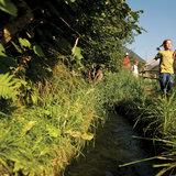 Der Vinschgau verfügt über ein ausgedehntes Netz an Waalwegen, die ohne Steigungen durch die Landschaft führen - ©Südtirol Marketing/Thomas Grüner