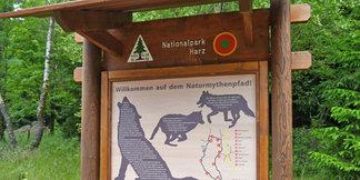 Wandertipp: Der Naturmythenpfad im Harz