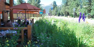 Mammoth Lakes' Top 10 Al Fresco Eats  - ©Lara Kaylor