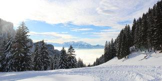 Günstige Skigebiete: Schuttannen, Schwarzwald - ©Henning Heilmann