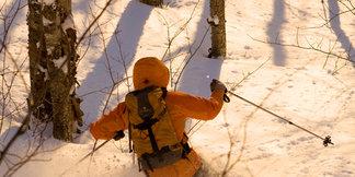 OTS Backcountry Guide: Mount Greylock, Western Massachusetts