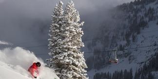 Puder i Snowbird (Utah, USA)