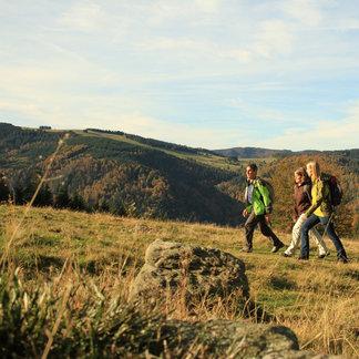 Herbstwandern am Hinterwaldkopf - ©Bergwerk/STG