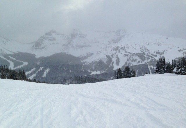 tons of fresh powder today. visibility was limited on the higer peaks. snowed all day so tomorrow will be solid.