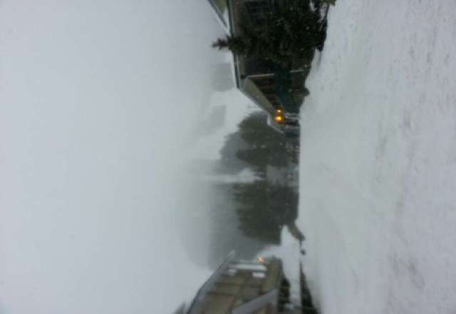 lots of powder and its dumping again.  fresh tracks from first to last chair