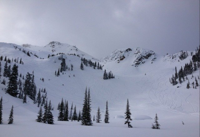 AMAZING powder. Skied tons of fresh snow on top of both mountains all week. First trip to Whistler, such a great time!