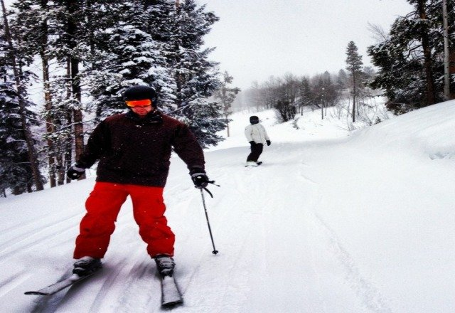 powder laps all day !