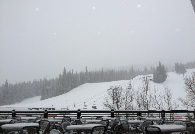 Snowing hard. Fantastic day. Pow pow platter!!