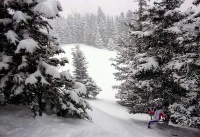 Epic powder