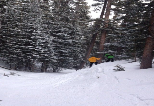 skiing powder in the gully