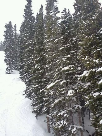 deep knee powder today, snowing all day ... just Epic Monday!