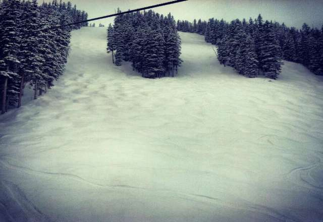 Amazing powder today!