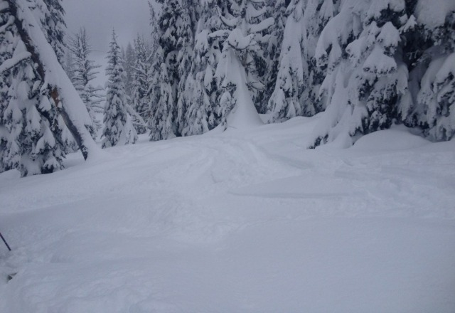 think ill keep traveling to brundage, get some untracked freshies on mexico :)