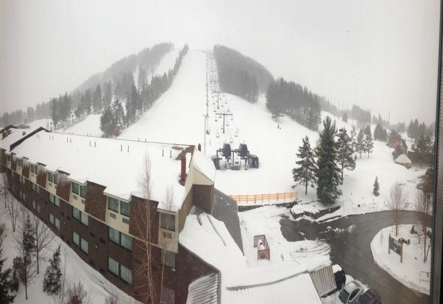 Snowy, 10
