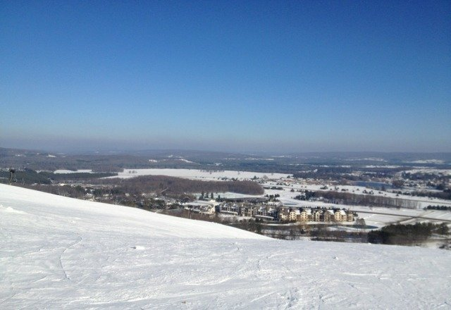 great groomed conditions on 1/8/13