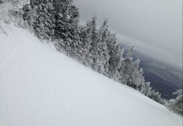 went Thursday - great great day! kudos to amazing groomers! fun trails!  excellent food variety/ quality
