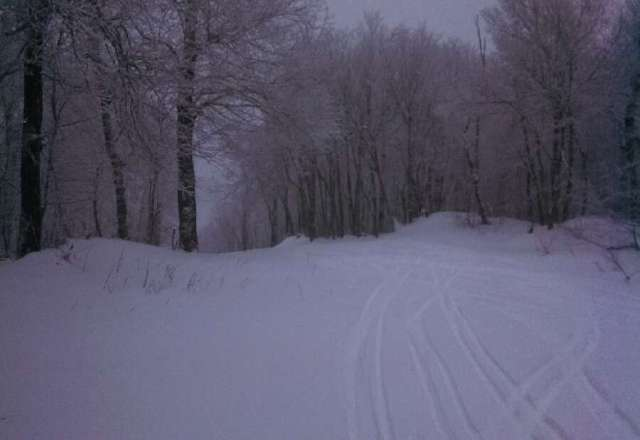 Great day.. 4 inch or more on the ground this morning and it snowed all day... Even the natural trails had coverage
