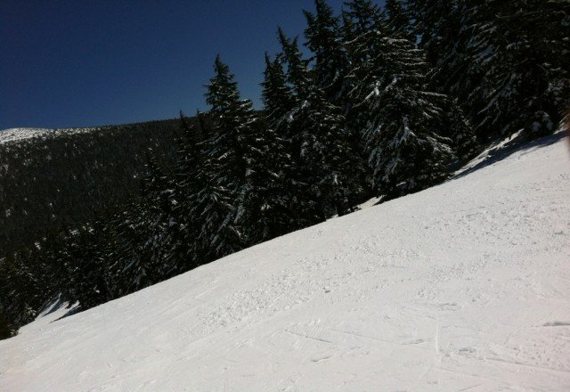 beautiful sunny day&thick powder on saturday april 15, 2012