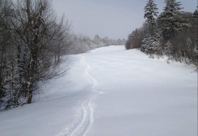 sweet day at okemo with a foot of fresh. had to find sheltered trails from the brutal wind