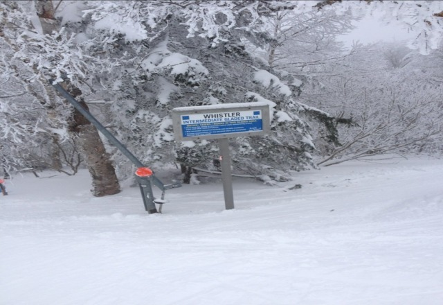 Great conditions! not crowded once you got to the south face, only the lower okemo lifts crowded