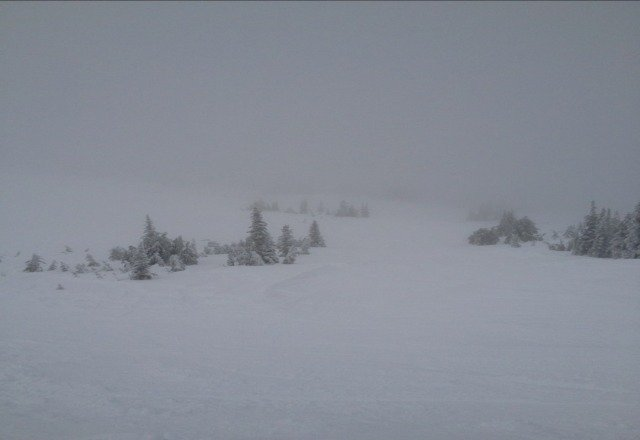 lots of powder, lifts open, great day!