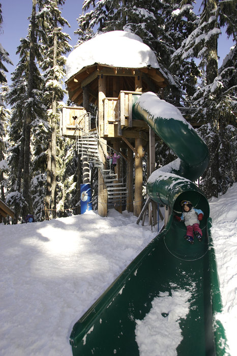 Treefort slide at Whistler B.C.