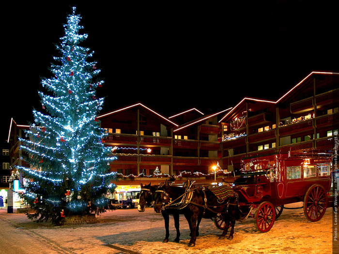 Zermatt with Christmas tree and horse and carriage at night