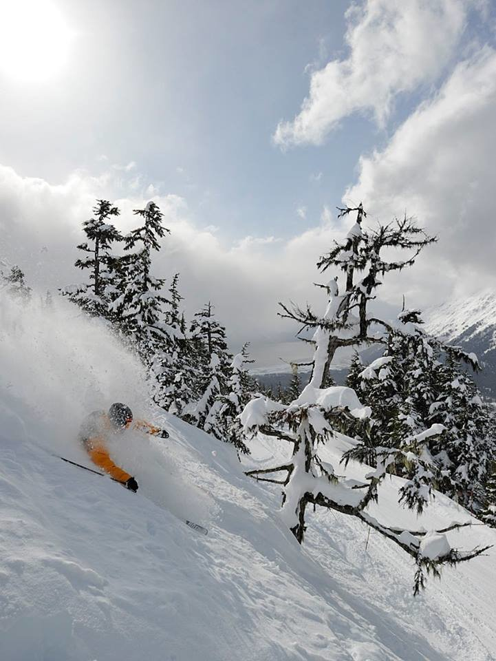 Perfect Alyeska powder. - ©® Alyeska Resort