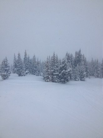 Amazing snow It snowed 3 in while we were skiing  The first day were I would go in trees and feel safe