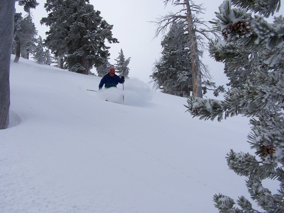 A skier finds powder in the backcountry of Mt. Baldy Ski Resort, California