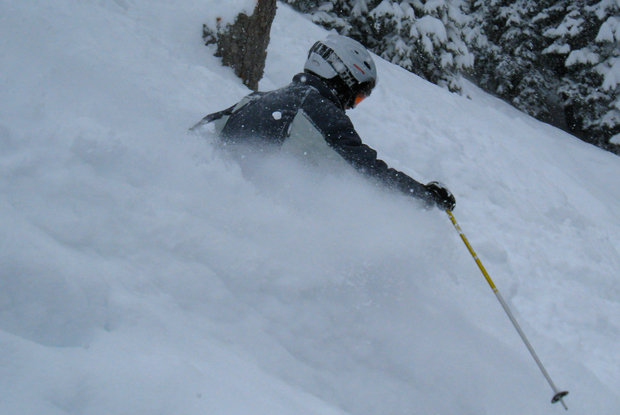 A skier descends Haskill Slide on a powder day at Whitefish Mountain Resort.
