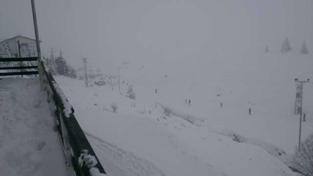 it has a lot of snow all tracks are open and it's very nice