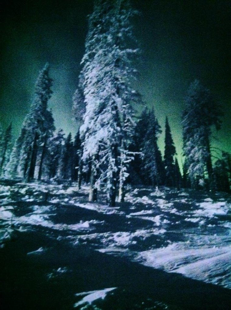 Mount Spokane nights  Can't beat it