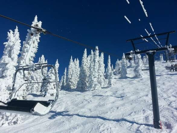 amazing conditions. beautiful flocked trees. packed powder snow and nice groomers. we had a great day today.