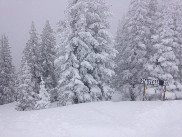 Epic day. Deep and still coming. Pass closed tonight so good luck! Hike the ridge. Ski the trees. Enjoy.