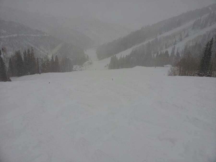 12+ inches of freshies.