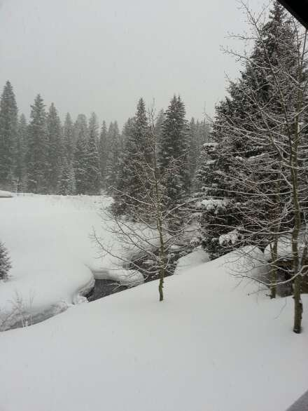 plenty of snow and its still coming down!