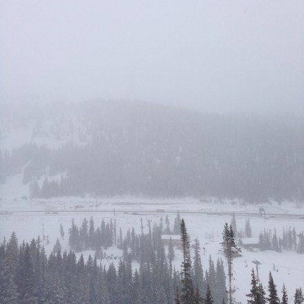 Yesterday was crazy!!! Best snow ive seen at the love esp in the trees!