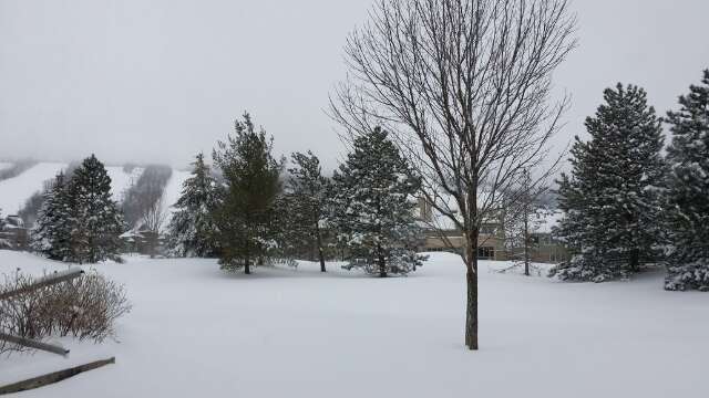 15 cm of fresh snow! As good as it gets for Ontario