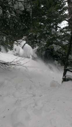 Jay peak is where you need to be hands down best glades and most snowfall in the northeast