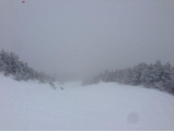 Ton of wet snow, zero visibility on top, freezing rain.