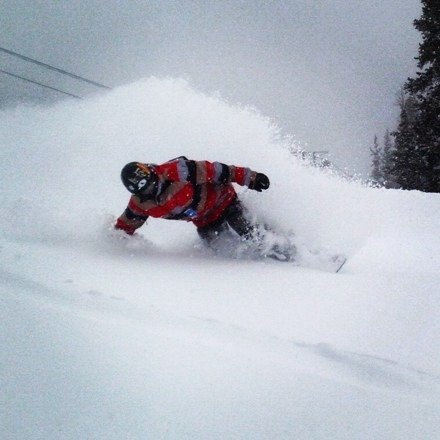 Powder everywhere .. Fresh lines all day