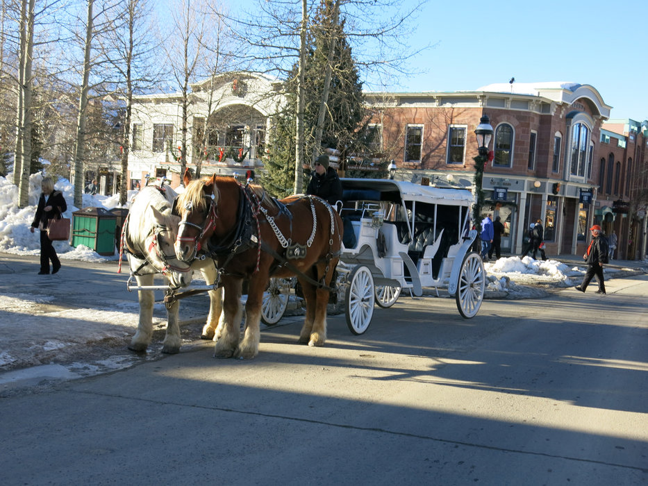 Romantic ride on a horse-drawn carriage in Breckenridge - ©Micaela Romani