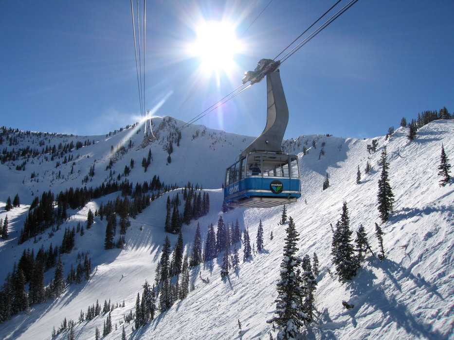 A ride and a lap on the tram is enough to know why Snowbird always claims the Visitors' Choice Awards top spot. - ©Snowbird Ski and Summer Resort