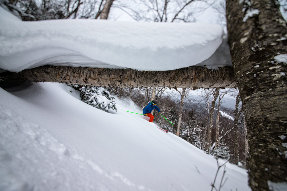 Stowe's tree skiing is fantastic, especially with a few inches overnight for Seth Morse to find!