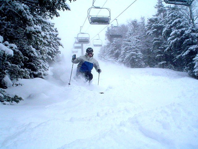 A skier bouncing through powder bumps at Wildcat, NH