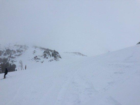 Still snowing! @stump alley around 10am this morning