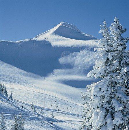 Alpbach - Ski Juwel Alpbachtal Wildschönau - ©Gerhard Gattinger | micma @ Skiinfo Lounge